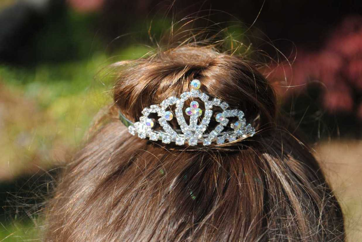 Rhinestone- Small Tiara-Small Rhinestone Tiara, first communion veils, flower girl tiaras